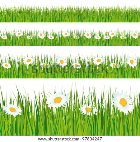 Green grass and daisies strips. Foregrounds vector collection. - stock vector