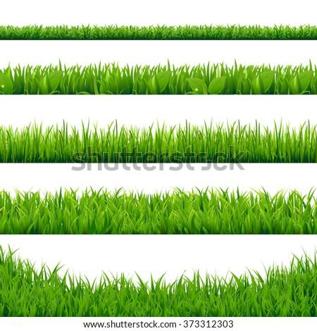 Green Grass Big Set, Vector Illustration - stock vector