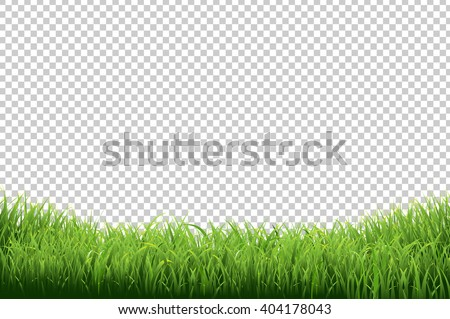Green Grass Border, Isolated on Transparent Background, With Gradient Mesh, Vector Illustration - stock vector
