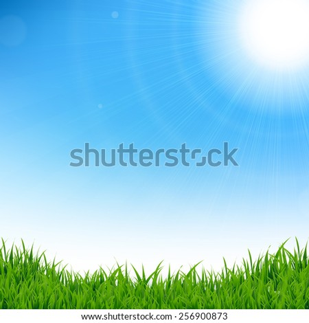 Green Grass Border, Vector Illustration - stock vector