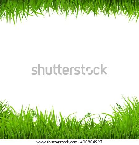 Green Grass Borders, Vector Illustration - stock vector