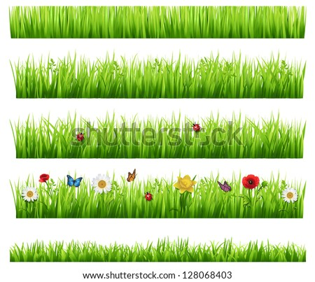 Green grass collection - stock vector