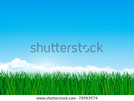 Green grass. Vector background of spring landscape of green grass on blue sky with sun beames and clouds. - stock vector