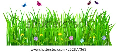 Green grass with flowers and butterflies on white background - stock vector