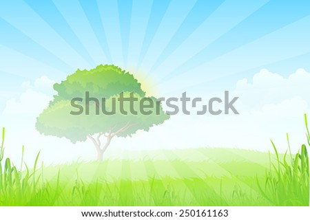 Green Landscape with Sun, Clouds, Grass and one Tree in the Fog - stock vector
