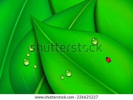 Green Leaf Eco Background - stock vector