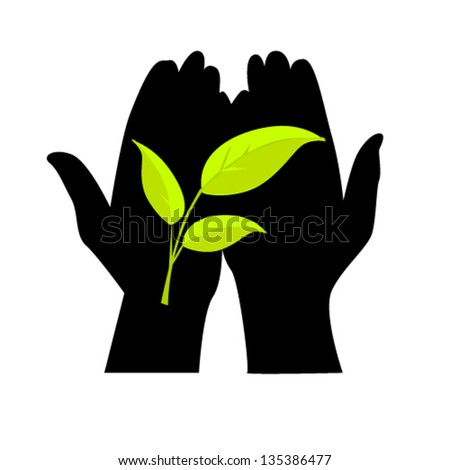 green leaf in hand - stock vector