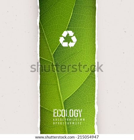 Green leaf texture under torn paper with recycling symbol. Vector, EPS10 - stock vector
