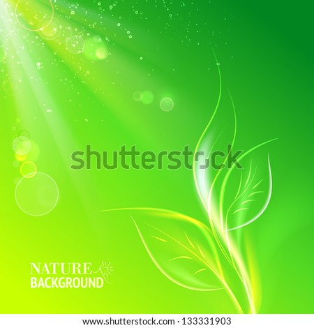 Green leaves, bright sun. Vector illustration, contains transparencies, gradients and effects. - stock vector