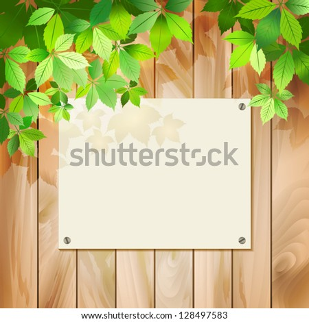 Green leaves on a wood texture. Vector spring or summer environmental background with tree branches, sunlight coming through the leaves, drop shadow on a wall, wooden textured fence, blank sign board - stock vector
