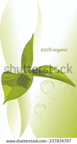 Green leaves on the abstract background. Vector - stock vector