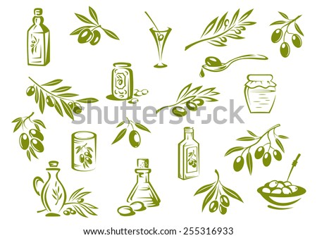 Green olive design elements showing olive oil in glass bottles, pickled olives in jars and branches with pointed leaves and olives - stock vector