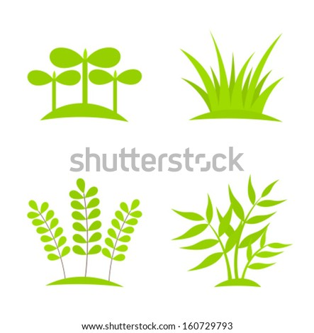 Green plants growing collection - stock vector