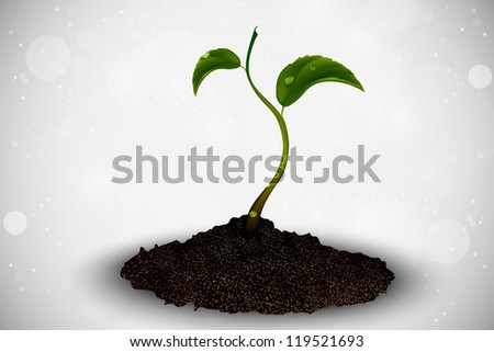 green sprout grows out of the ground - stock vector