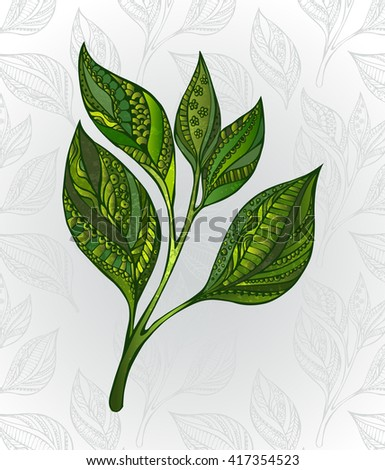 Green tea sprout, decorated with an abstract pattern on a gray background, decorated with stylized leaves. Tea design. Hand drawn. Sketch drawing