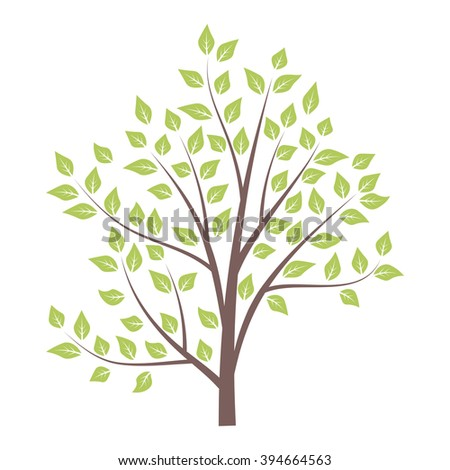 Green tree isolated on white background. Vector illustration. - stock vector