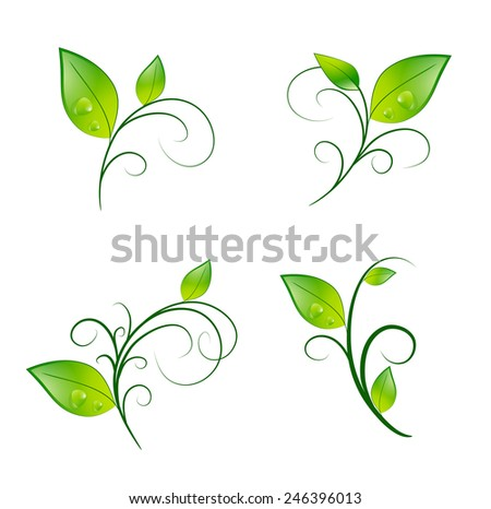Green Vitality Leaf Floral Decoration Eco Set - stock vector