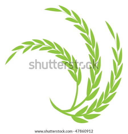 Green Wheat - stock vector