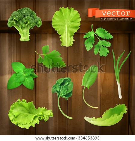 Greens, vector icon set on wooden board - stock vector