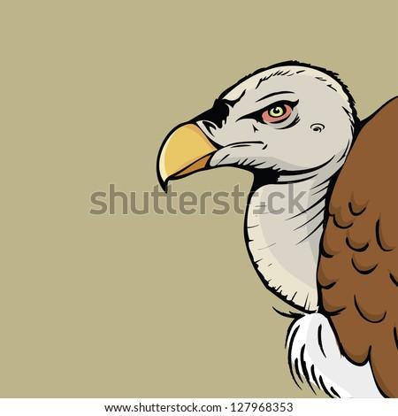 Griffon vulture - vector illustration - stock vector
