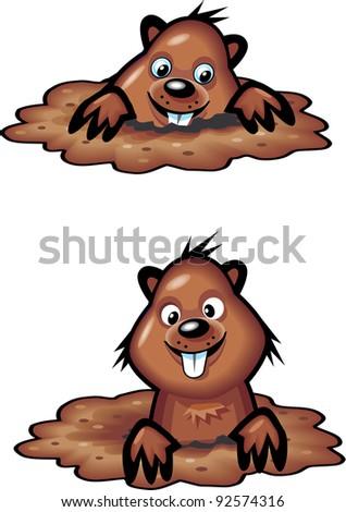 Groundhog - stock vector