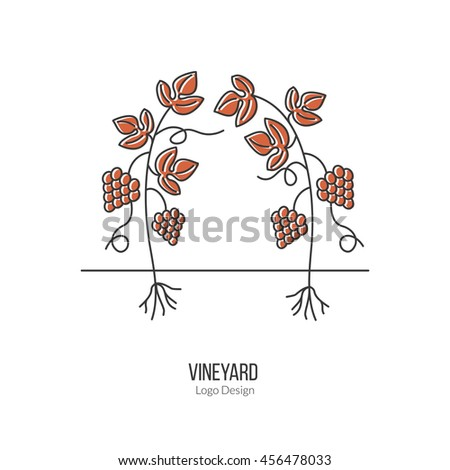 Growing grapes. Single logo in modern flat and thin line style isolated on white background. Outline winery symbol. Simple mono linear pictogram. Stroke vector logotype template. - stock vector