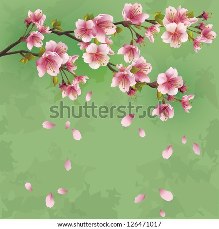 Grunge Japanese background green with sakura blossom - Japanese cherry tree. Greeting or invitation card. Vector illustration - stock vector