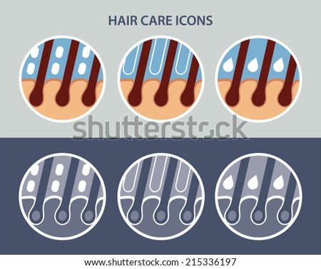 Hair care icon set, vector - stock vector