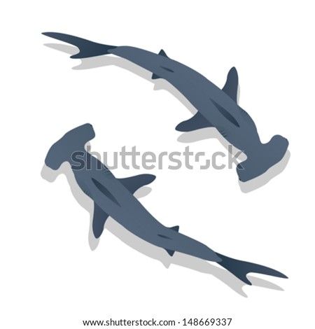 Hammer sharks vector - stock vector