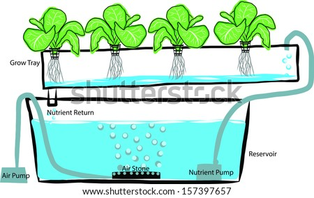 Hand draw diagram of a hydroponics setup - stock vector