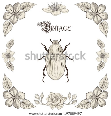 Hand drawing beetle flowers and leaves decorative floral frame Vintage engraving style - stock vector