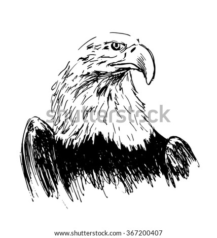 Hand drawing eagle - stock vector