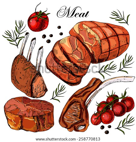 Hand drawing meat. Vector illustration - stock vector