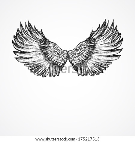 hand drawn artistic wings - stock vector