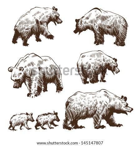 Geometric Bear Drawing Hand drawn bears set - stockGeometric Bear Drawing