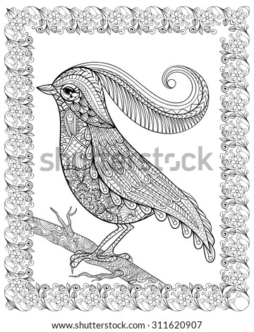Hand drawn bird sitting on branch framed for adult anti stress Coloring Page with high details isolated on white background, illustration in zentangle style. Vector monochrome sketch. Bird collection. - stock vector