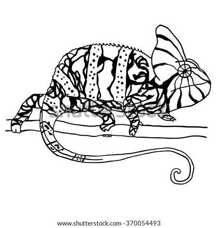 Hand drawn chameleon. Vector illustration isolated on white, Black and white reptile - stock vector