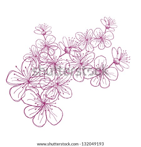 Hand Drawn Cherry Blossoms. EPS 8 vector, grouped for easy editing. No open shapes or paths. - stock vector