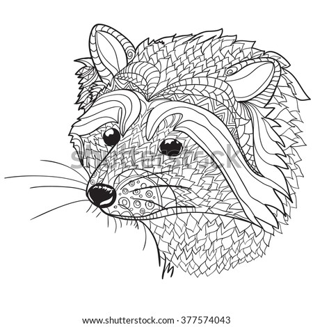 Raccoon Head Coloring Coloring Pages Raccoon Face Coloring Pages