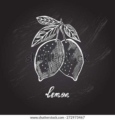 Hand drawn decorative lemon fruits, design elements. Citrus collection. Can be used for cards, invitations, gift wrap, print, scrapbooking. Kitchen theme. Chalkboard background. Sketch - stock vector