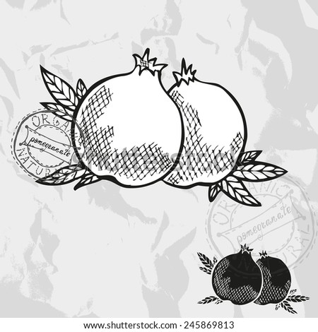 Hand drawn decorative pomegranate fruits, design elements. Can be used for cards, invitations, gift wrap, print, scrapbooking. Kitchen theme - stock vector
