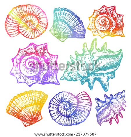 hand drawn design set of beautiful colorful stylish sea shells - bright colors watercolor vector illustration - stock vector