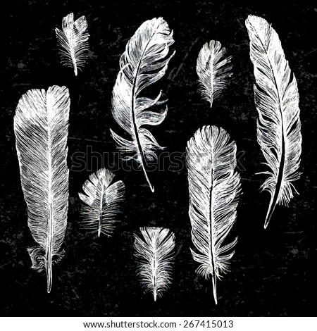 Hand drawn feathers set on black background - stock vector