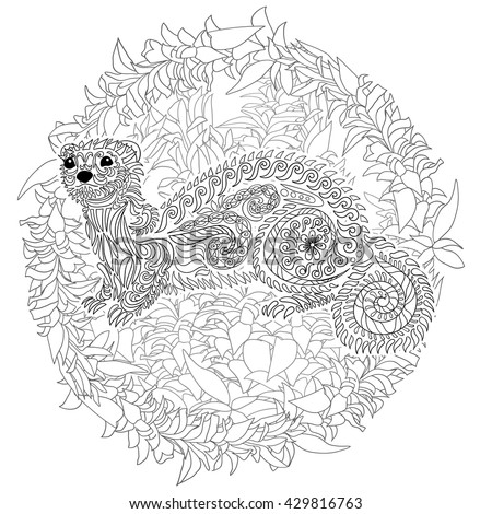 Ferret stock photos images pictures shutterstock for Ferret coloring pages