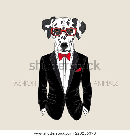 hand drawn illustration of dalmatian dog dressed up in tuxedo - stock vector