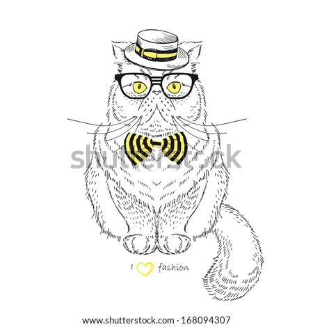 Hand Drawn Illustration of dressed up Persian Cat isolated on white - stock vector