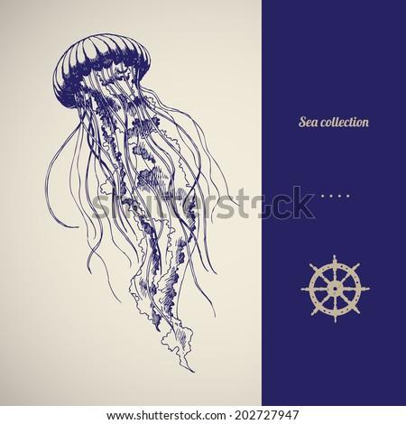Hand drawn jellyfish. Vector illustration. Sea collection. - stock vector