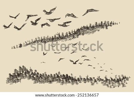 Hand drawn landscape with flying birds and fir forest, vintage vector illustration - stock vector