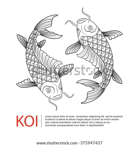 Koi stock photos images pictures shutterstock for Koi fish vector
