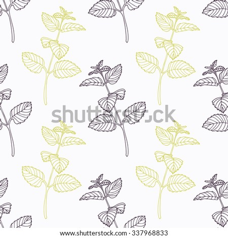Hand drawn melissa branch stylized black and green seamless pattern. Doodle drawing spicy herbs. Kitchen background. Hand drawn seasoning. Vector illustration - stock vector
